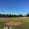 baseball, harbour cats, pizza, best in victoria